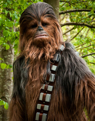 chewbacca lookalike lookalike star wars characters. Black Bedroom Furniture Sets. Home Design Ideas