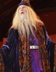dumbledore double