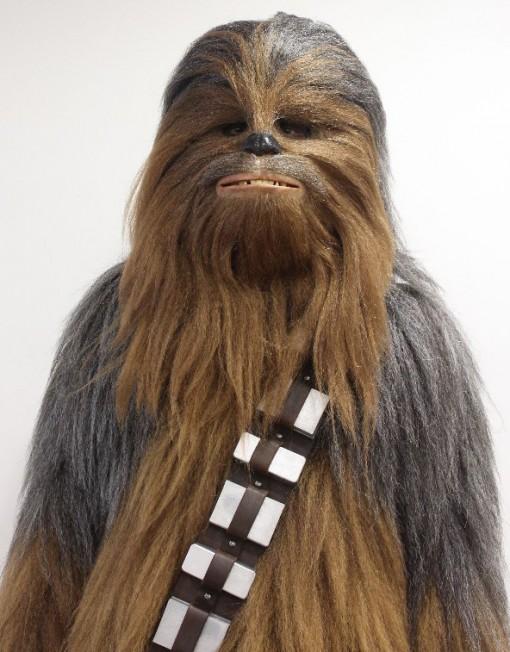 Chewbacca Lookalike