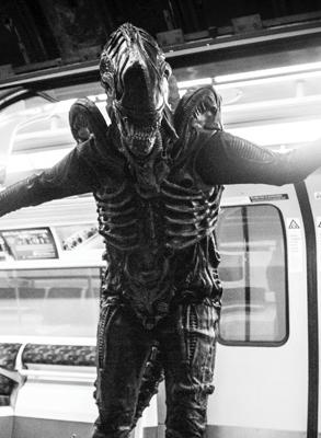 alien lookalike