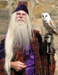 dumbledore lookalike