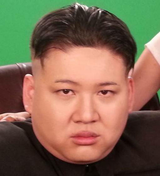 Kim Jong Un Lookalike