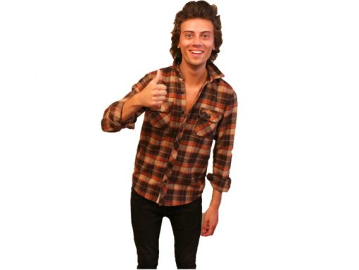 Harry Styles Lookalike