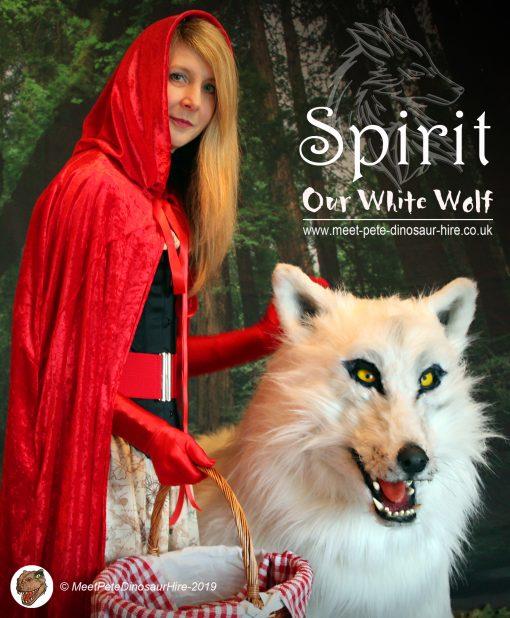 Wolf Lookalikes